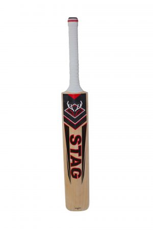 Red Stag English willow cricket bat with short handle